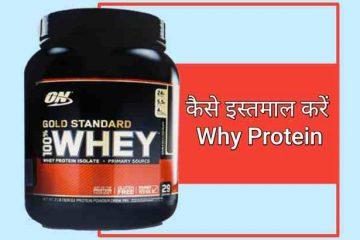Whey Protein Hindi