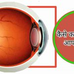 Human eye in Hindi