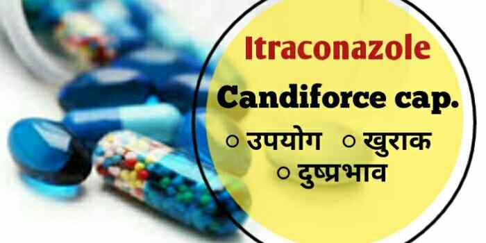 candiforce Hindi