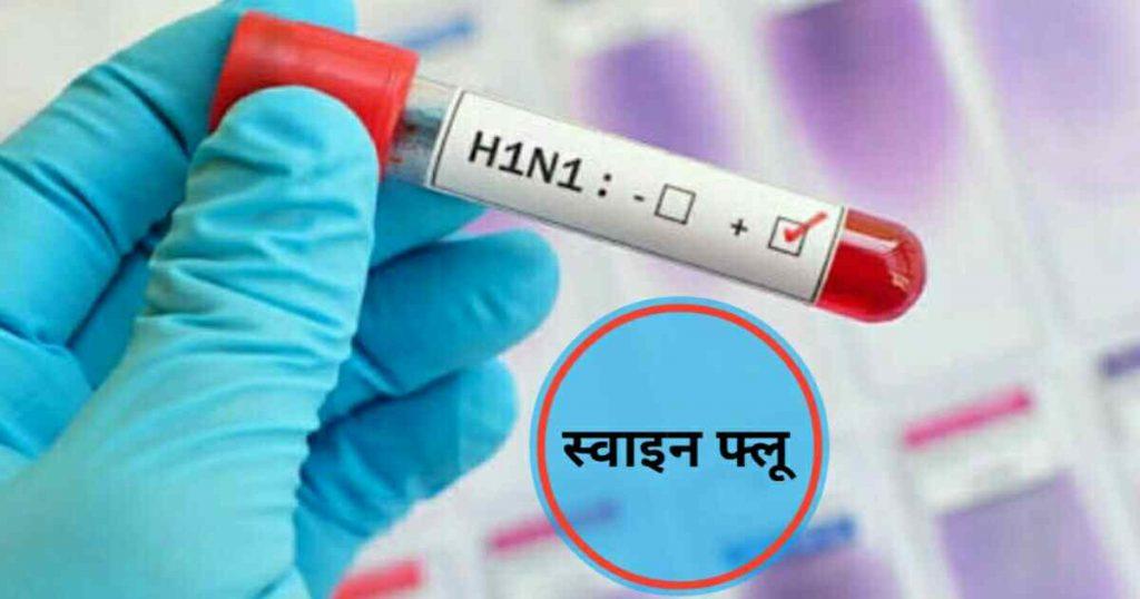 swine flu in hindi